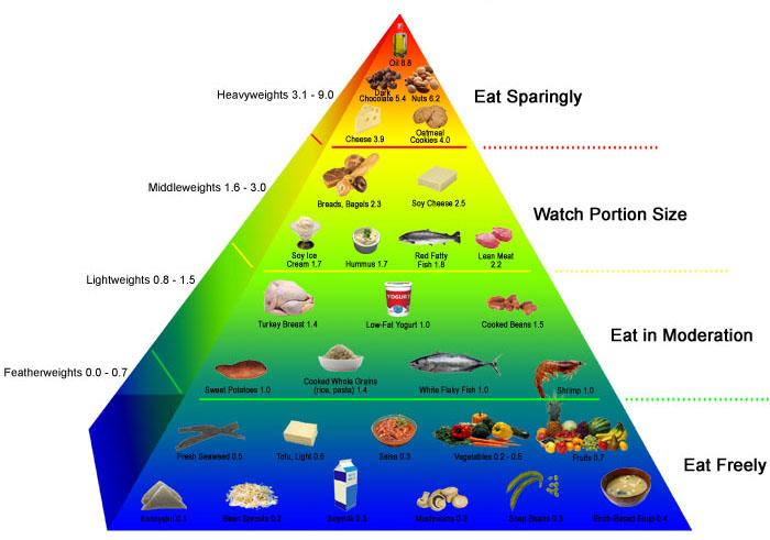 caloricdensitypyramid.jpg